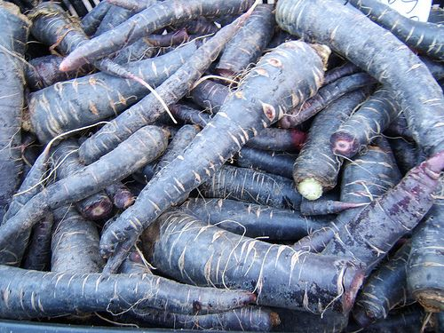Black Carrots
