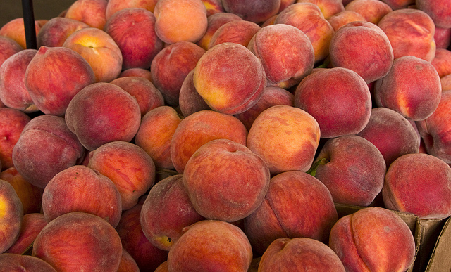 An Abundance of Peaches